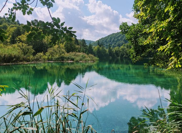 Plitvice Or Krka: Which Is Most Worth Visiting