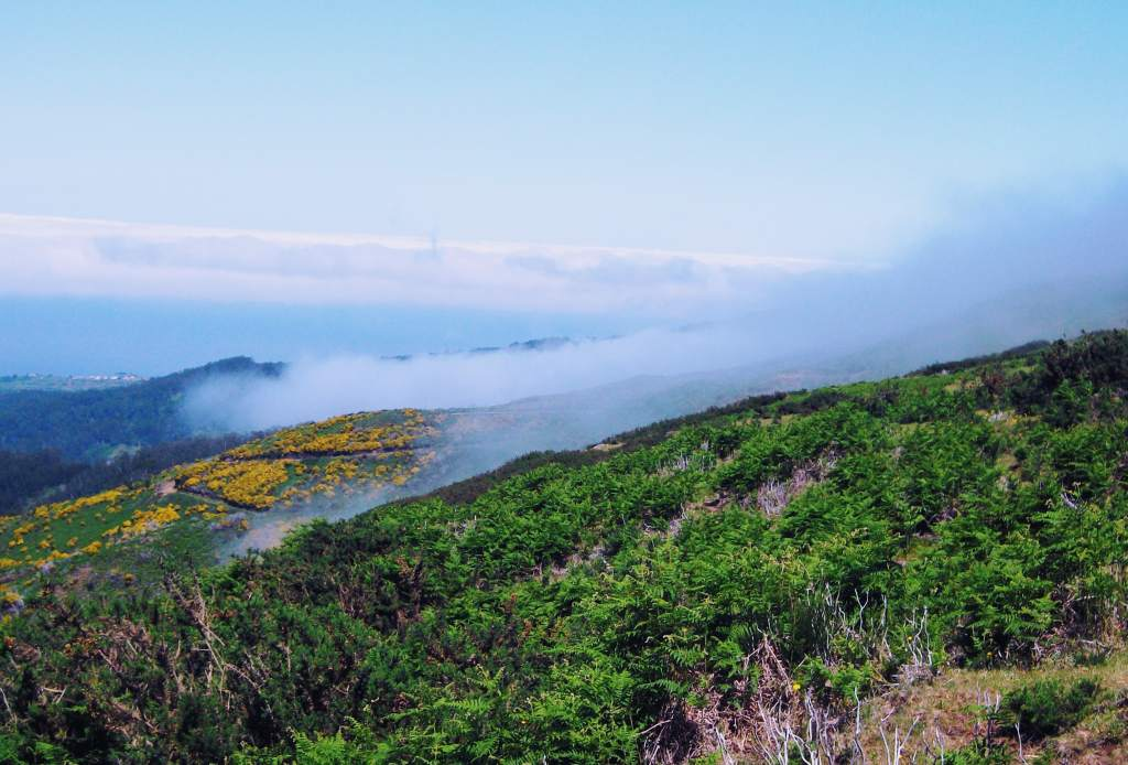 Hiking through the clouds in Madeira