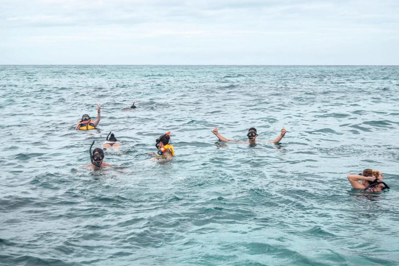 Wanderers & Warriors - Intro Travel - Snorkelling, Gili T, Bali