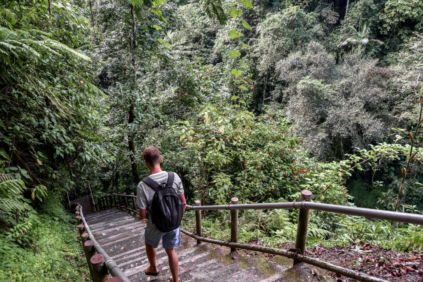 Wanderers & Warriors - Charlie & Lauren UK Travel Couple - Nungnung Waterfall Bali - A Complete Guide - Bali Waterfalls - Best Waterfalls In Bali - Waterfalls Near Ubud - The Walk Down To Nungnung Waterfall