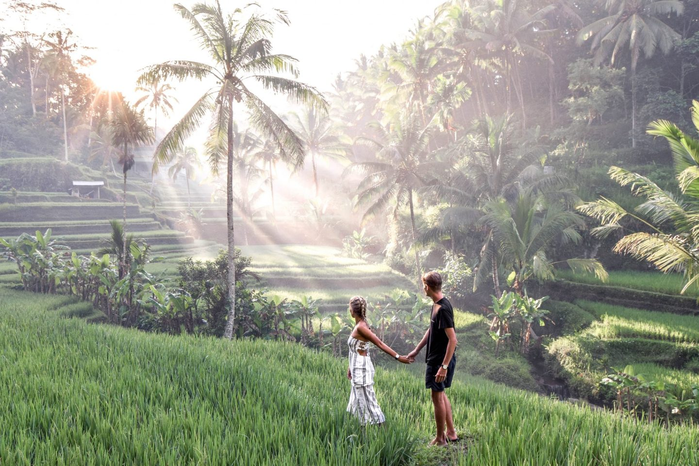 Wanderers & Warriors - Charlie & Lauren UK Travel Couple - The Magical Tegalalang Rice Terraces Ubud Bali - Tegalalang Rice Terrace - Tegalalang Rice Fields - Tegalalang Rice Terrace Entrance Fee
