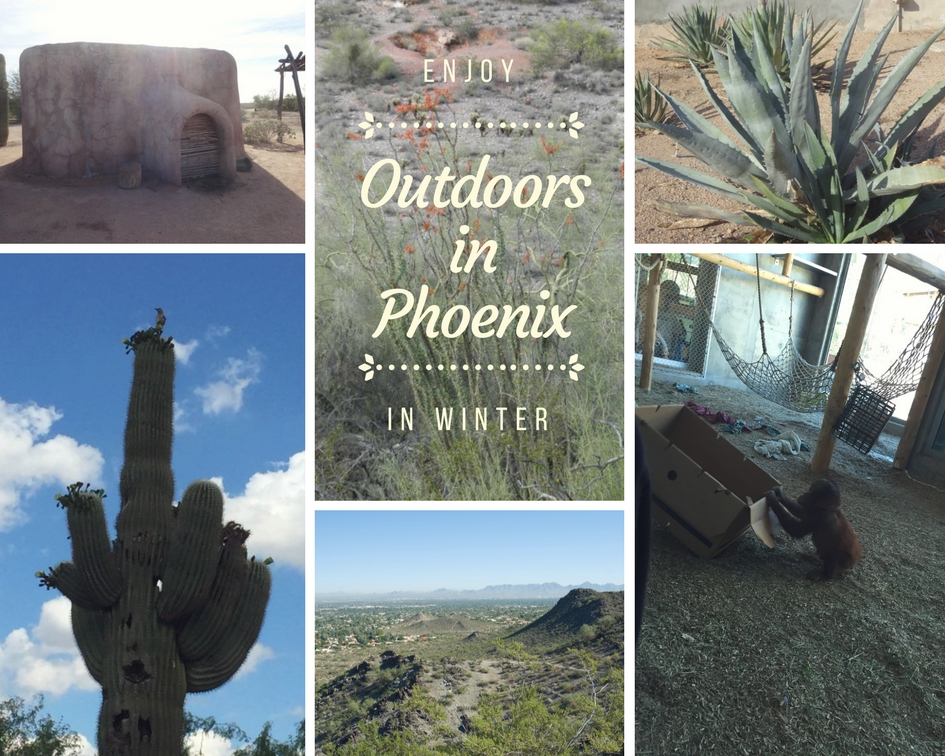 Outdoors Attractions in and Around Phoenix to Enjoy in the Winter