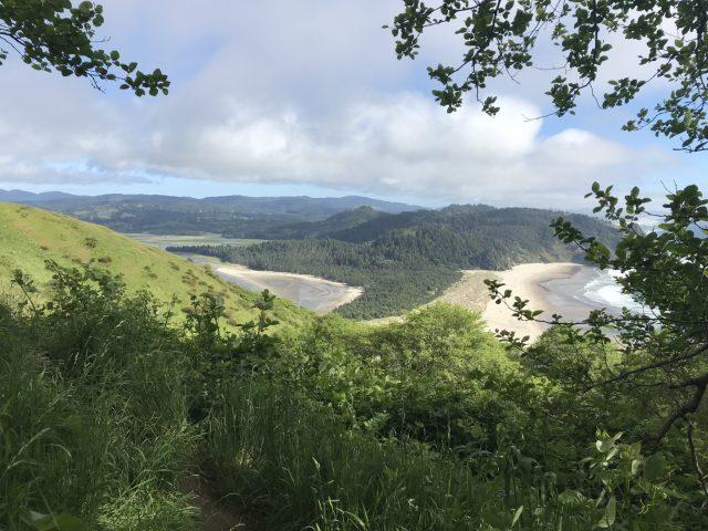 A postcard view of the Oregon Coast