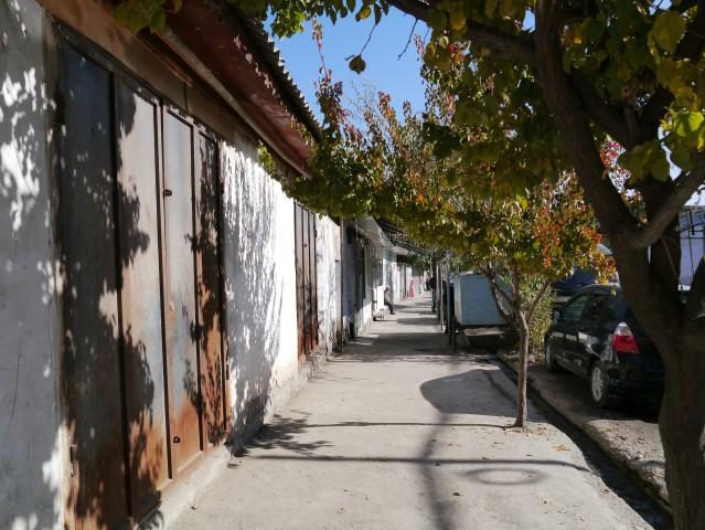 the leafy lanes near the bazaar are reminiscent of Tashkent