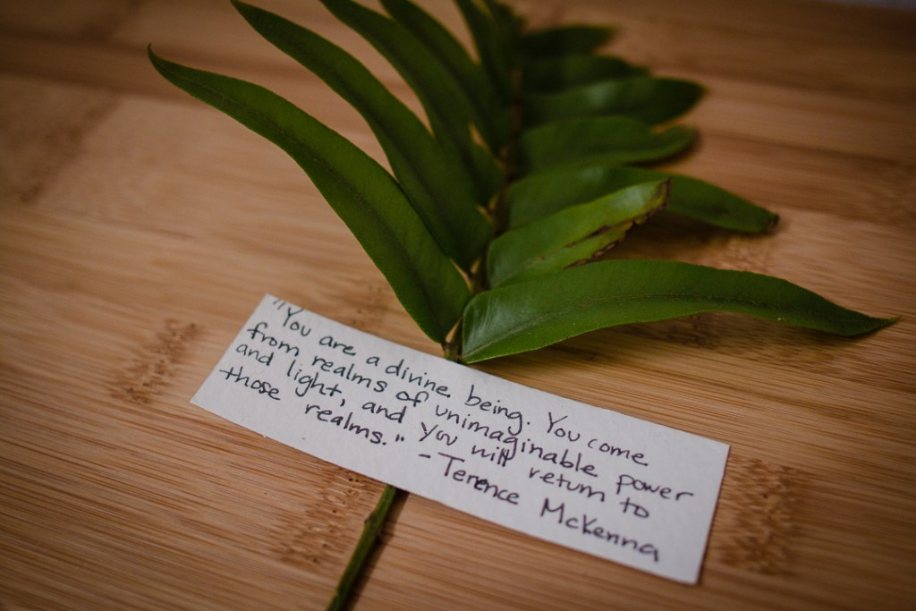 Finca Victoria, Vieques, Puerto Rico, Hotel, handmade, eco-friendly