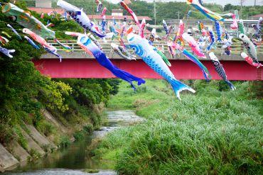 carp kites on a waterway