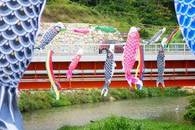 hanging koinobori for golden week