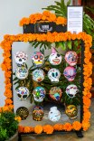 day-of-the-dead-mexico-2016-31