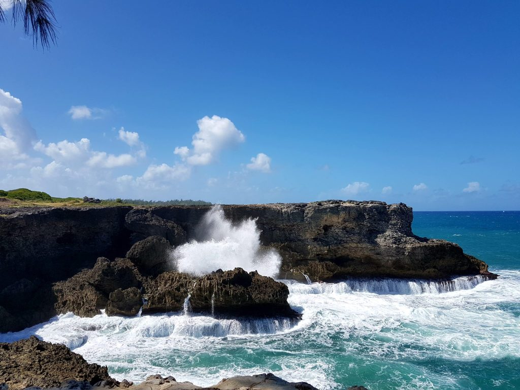 Barbados Cruise Excurions: North Point