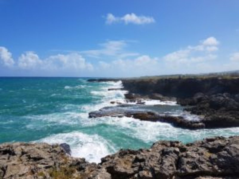 Island Tour of Barbados: North Point View