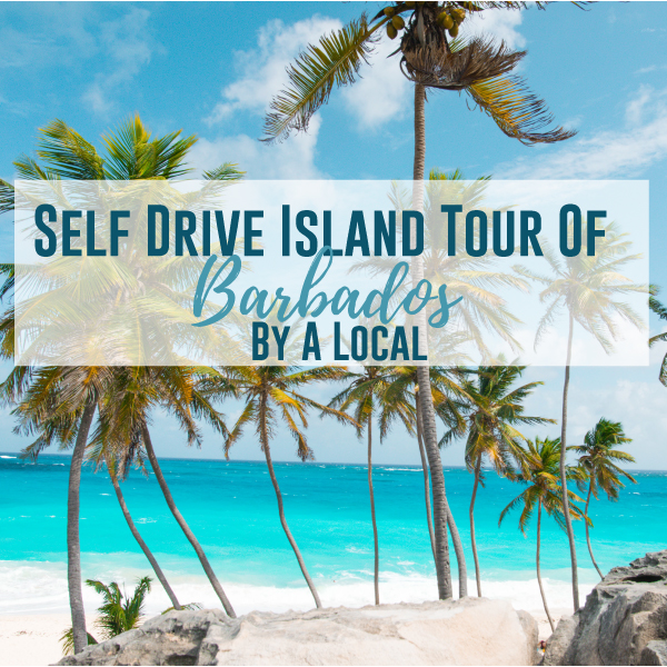 Self Drive Island Tour of Barbados by a Local