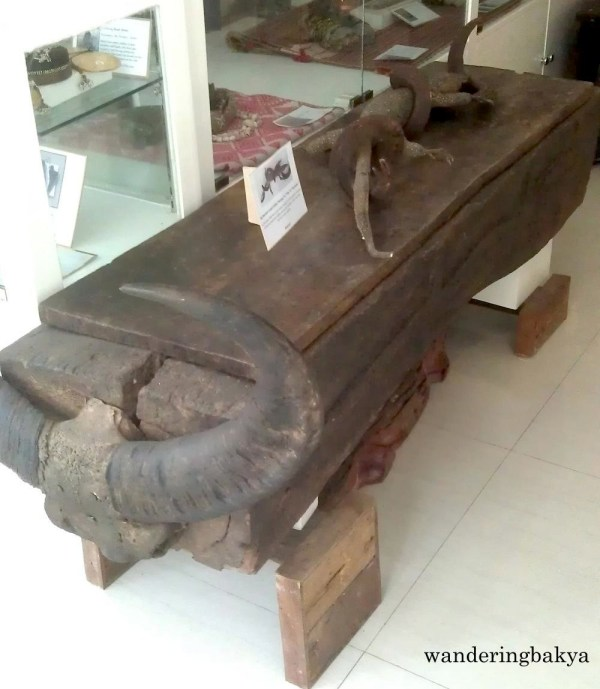 Secondary Coffin and a big monitor lizard (baniyas or tilay or bayawak) from Benguet