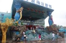 Ocean World- Ningbo China Wandering Browns