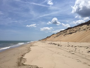 Cape Cod's Beaches are Just the Start