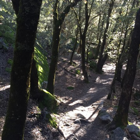 Valley Floor Trail