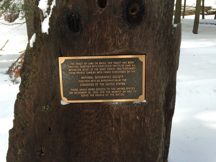 Matt Emerson WBNL Sequoia National Park Big Trees Plaque