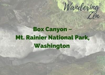 Wandering Zen – Box Canyon, Mt Rainier National Park, Washington