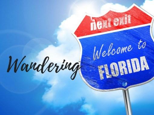Wandering Florida