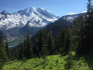 Matt Emerson Wandering But Not Lost Mt Rainier National Park