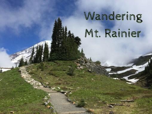 Wandering Mt. Rainier