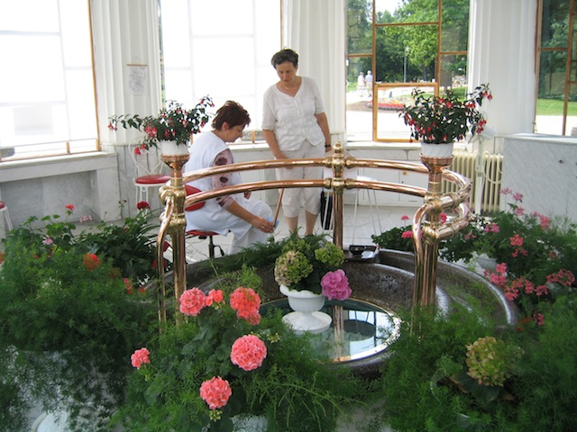 Drinking hall with flowers in Frantiskovy Lazne