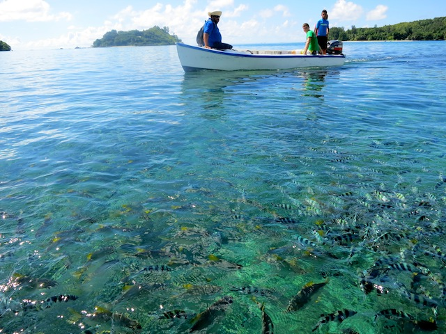 Where are the Seychelles Islands? Fishermen in the ocean.