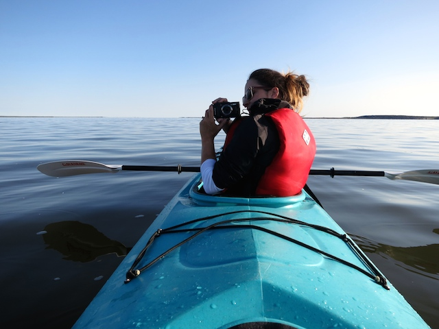 Things to do in Canada, kayak with belugas