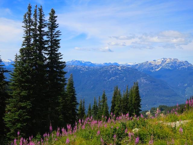 Peak to Peak Whistler Mountain view