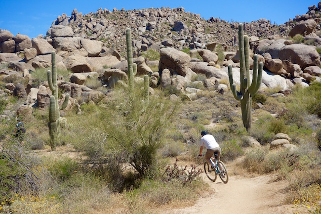 Scottsdale mountain biking at Brown's Ranch in the desert