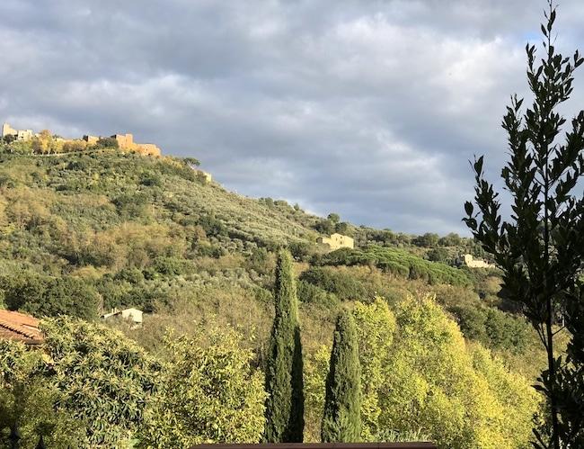 Hills of Tuscany near hot springs spa resort of Monsummano Terme