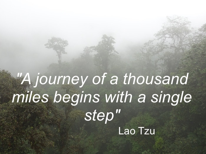 """The greatest travel quotes include this one by Lao Tzu, """"A journey of a thousand miles begins with a single step."""