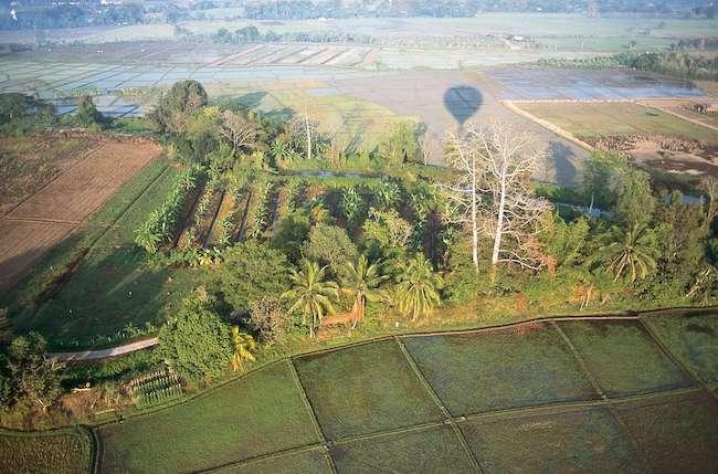 Fields around Chiang Mai Thailand