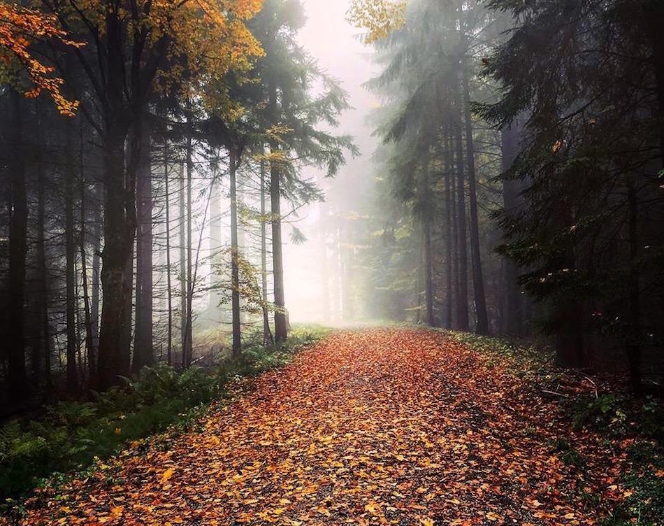 Hiking in Tegernsee Bavaria Germany Wandering Chocobo