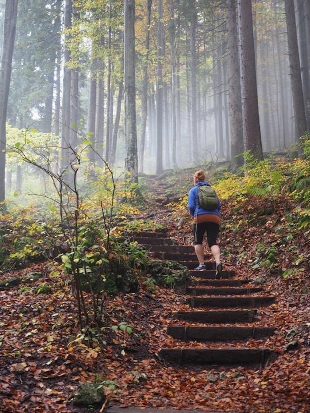 Hiking Tegernsee in autumn Bavaria Germany