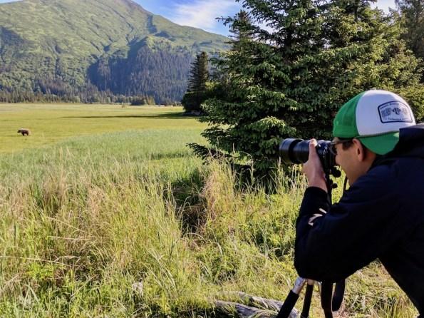 alaska bear viewing ecotour lake clark national park