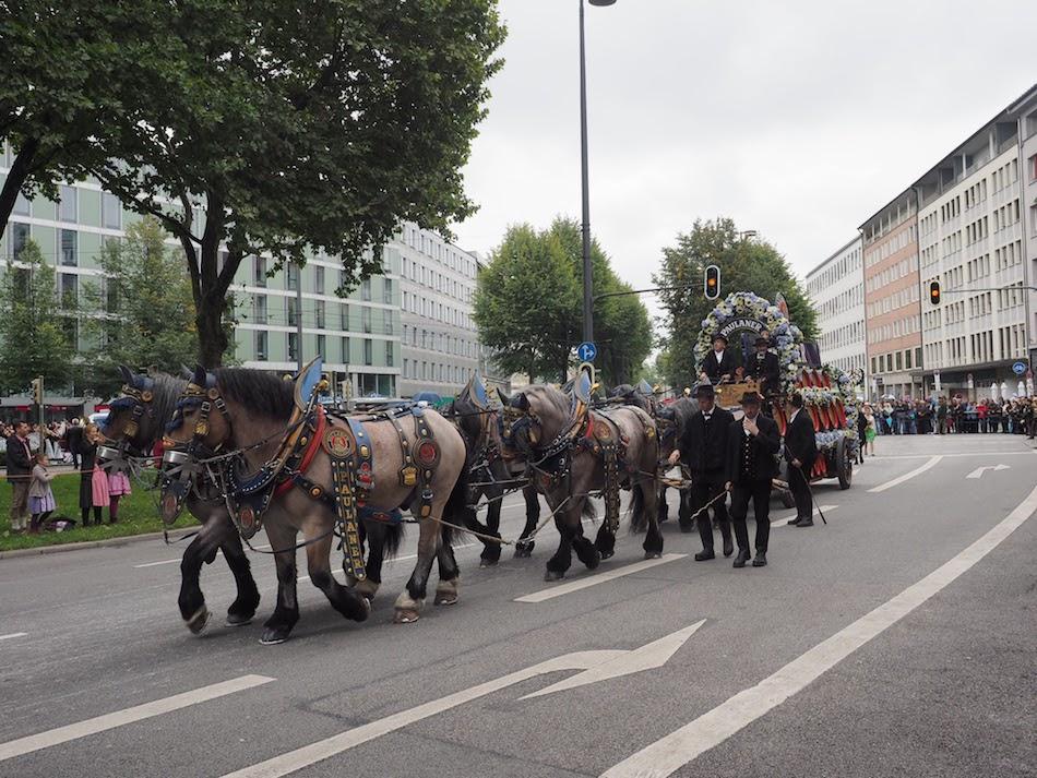 Munich Augustiner beer Oktoberfest horse carriages