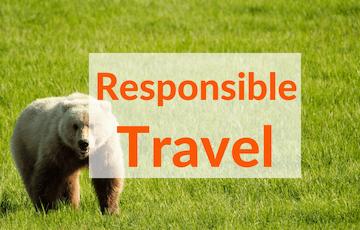 Responsible Travel Resources Wandering Chocobo