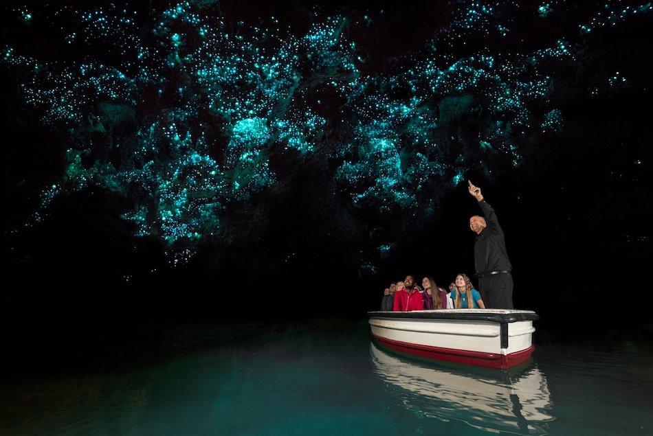 Gloworn Caves Waikato Traverse Journeys New Zealand