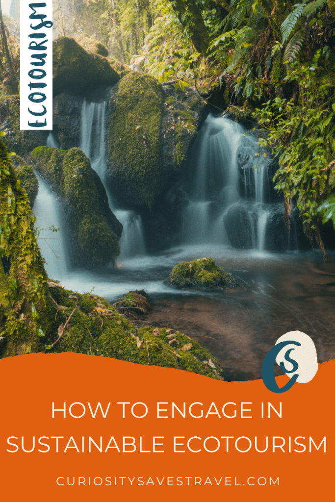 How to engage in sustainable ecotourism