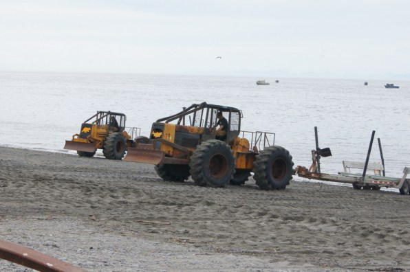 Skidders were bringing in the boats non stop