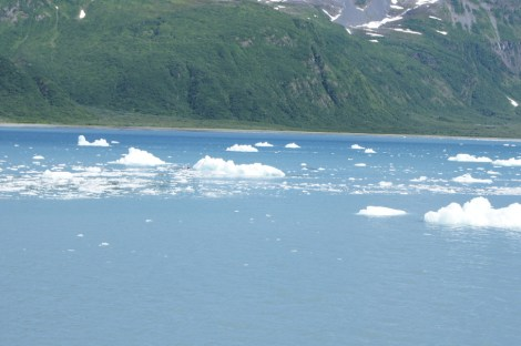 Ice fallen from the glacier floated all around us