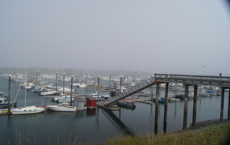 Small boat harbor at low tide