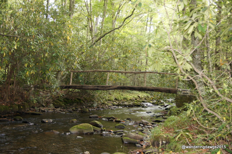 Bridge at the beginning of one of the trails in Cataloochee Valley