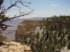 Grand Canyon North Rim Cape Royal Overlook