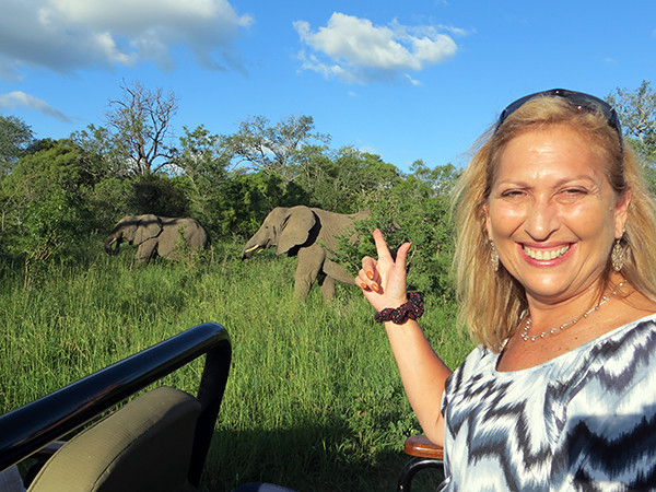 Elephants at Thornybush