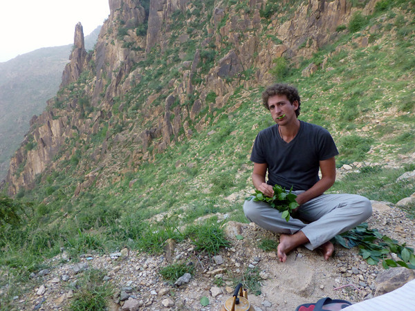 Chewing Qat in Yemen 4