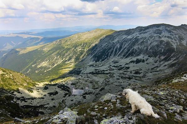 Residency in a European Country - Carpathian Mountains, Romania