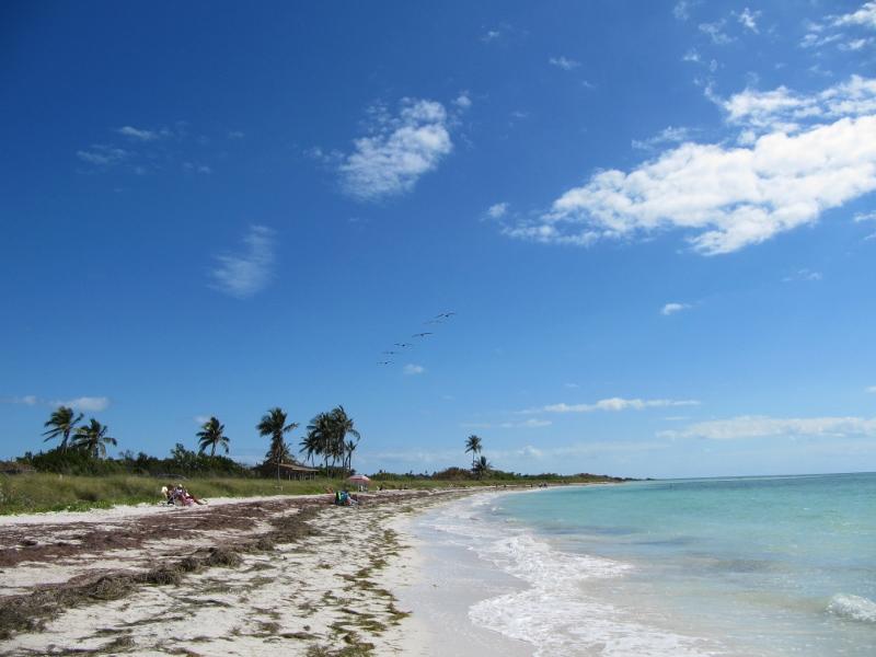 Wandering Enterprise  Arriving in Key West Florida on