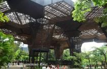 20140818_in-the-jardin-botanico