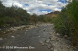 20140923_the-river-in-the-reserve